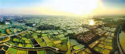 中国19处世界灌溉工程遗产潜在价值巨大